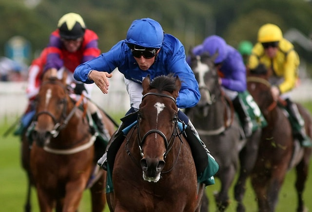 A View From The Rails: Bluepoint worthy favourite for Middle Park