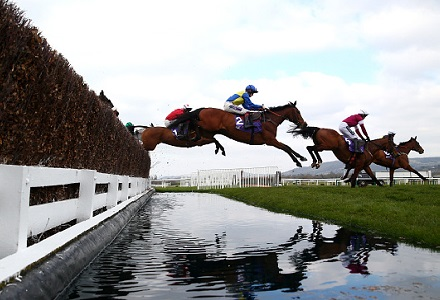 Stilletto can stand tall at Cheltenham