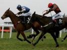 'Exciting' Boite could prove handicap blot