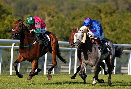 Crowley v De Sousa: Jockeys' Title Betting Update