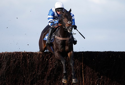 A View From The Rails: Frodon can shine in Gold Cup