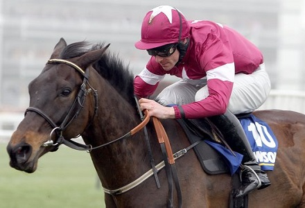 Lucky can be the toast of punters in Champion Bumper