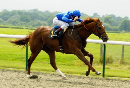 Judge can lay down the law at Kempton