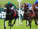 Friday's Horse Racing Betting Preview