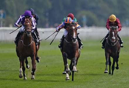St Leger favourites: Idaho set to go off odds-on
