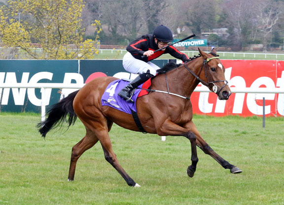 1,000 Guineas Betting Preview