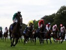 Nick Luck: Suedois can be sprint king at Haydock