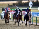 A View From The Rails: Flyer a cracking Lingfield punt