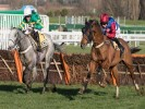 Cardinal looks ideal type for County Hurdle