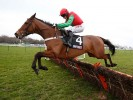 Cheltenham Festival: Wolf ready to roar at Festival?