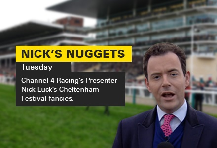 Peace And Co the call in wacky Champion Hurdle