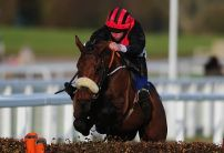 A View From The Rails: Pereguine can swoop at Warwick