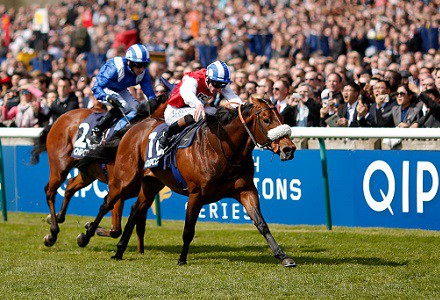 Qipco Champions Day Betting Update