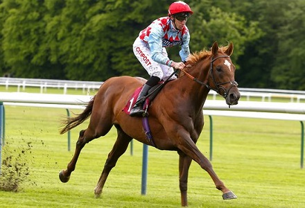 Investec Derby Betting Preview