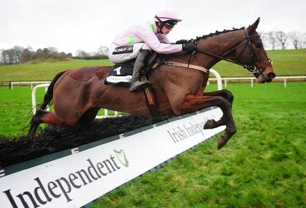 Arbre has right credentials for Coral Cup