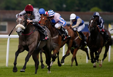 Wednesday's Horse Racing Betting Preview