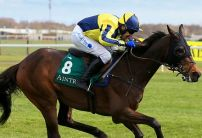 A View From The Rails: Starchitect a Cesarewitch cracker