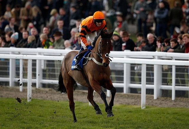 Thistlecrack to miss Cheltenham with tendon injury