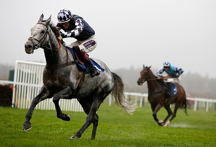 Back Valtat to rule the roost in Tingle Creek