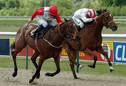 Tijuca worth supporting at Wolverhampton