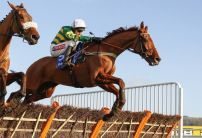 Cheltenham Festival: Weekend Runners to look out for
