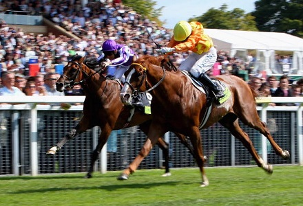 Friday's York Channel 4 Racing Tips