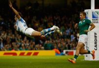 South Africa v Argentina Preview