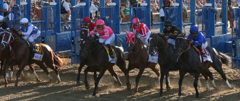 Champagne Picks: Belmont Preview 09/07 | Picks | Oddschecker