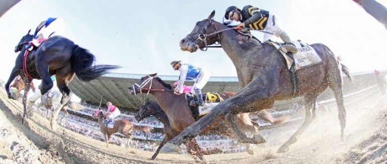 Saturday Racing Picks: Belmont Preview | Picks | Oddschecker