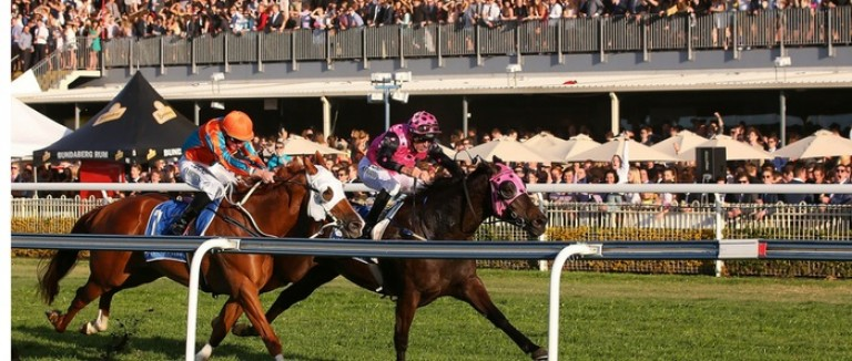 Free Saturday Horse Racing Tips| Best Bets | Oddschecker | Tips