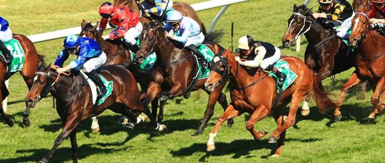 Free Sunday Horse Racing Tips | Best Bets | Oddschecker