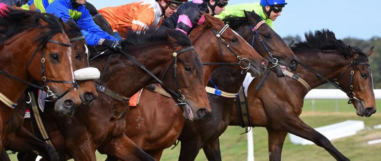 Free Thursday Horse Racing Tips| Best Bets | Oddschecker