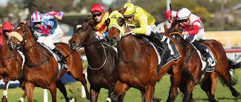 Horse Racing Tips, Betting Previews & Racing Form | Oddschecker
