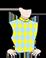 Capannello silk