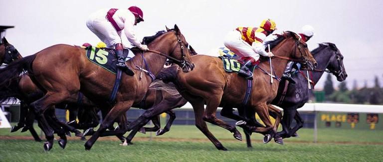 Cranbourne Racing Tips
