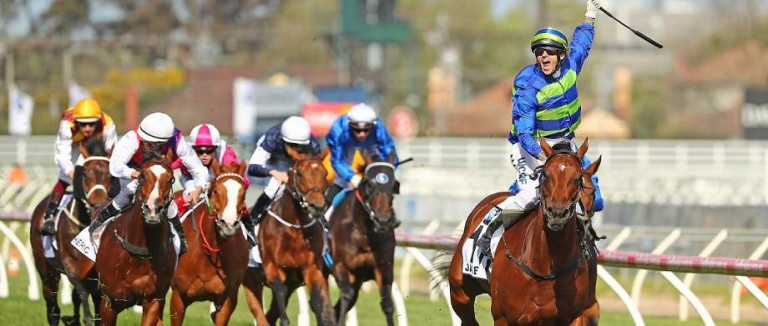 The Essential Form Guide for the Caulfield Cup