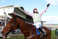 Cheltenham Festival 2021 Beginner's Betting Guide