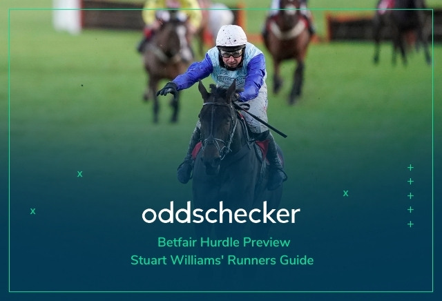 Betfair Hurdle Odds: Tips, Runners Guide & Preview