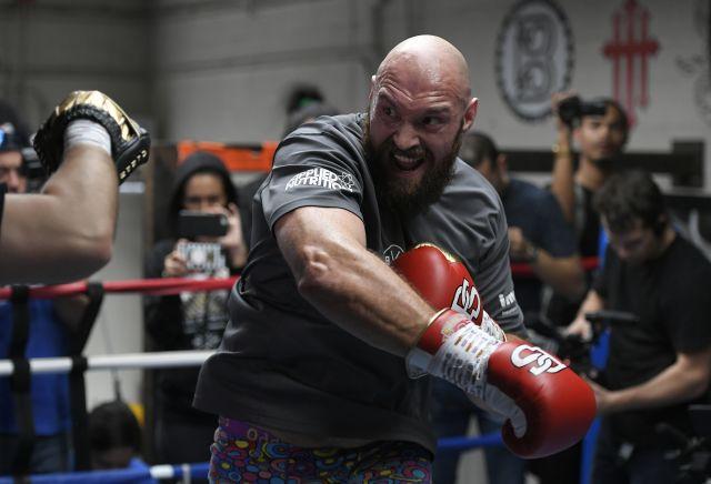 Tyson Fury backed to defeat Deontay Wilder following Joe Rogan interview