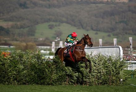 Cause of Causes wins the Cross Country Chase