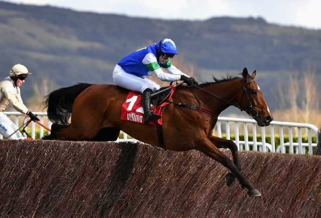 Becher Chase: Runners Guide & Betting Latest