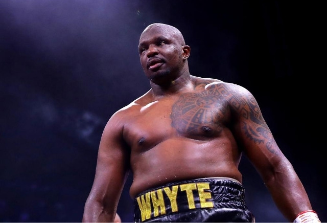 Dillian Whyte remains odds-on FAVOURITE in Povetkin rematch despite brutal KO loss