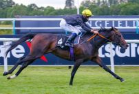 REVEALED: Epsom Derby and Oaks odds