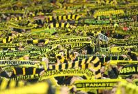 Erling Haaland Specials: How far do bookies think the Dortmund star will go this season?