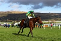 Champion Hurdle Result: Espoir D'Allen upsets the odds