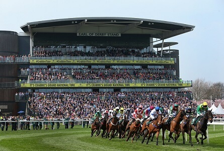 grand national runners and odds