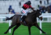 Supasundae wins the Coral Cup ahead of Taquin du Seuil