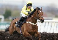 Three most backed horses ahead of Christmas racing
