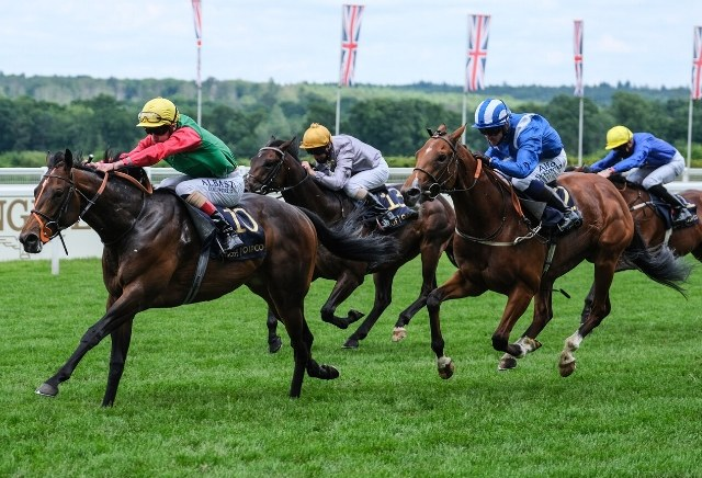 150/1 Nando Perrado is the biggest-priced winner ever at Royal Ascot