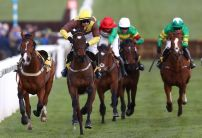 Parimatch Cheltenham Offer: Bet £10 Get £50 in Bonuses